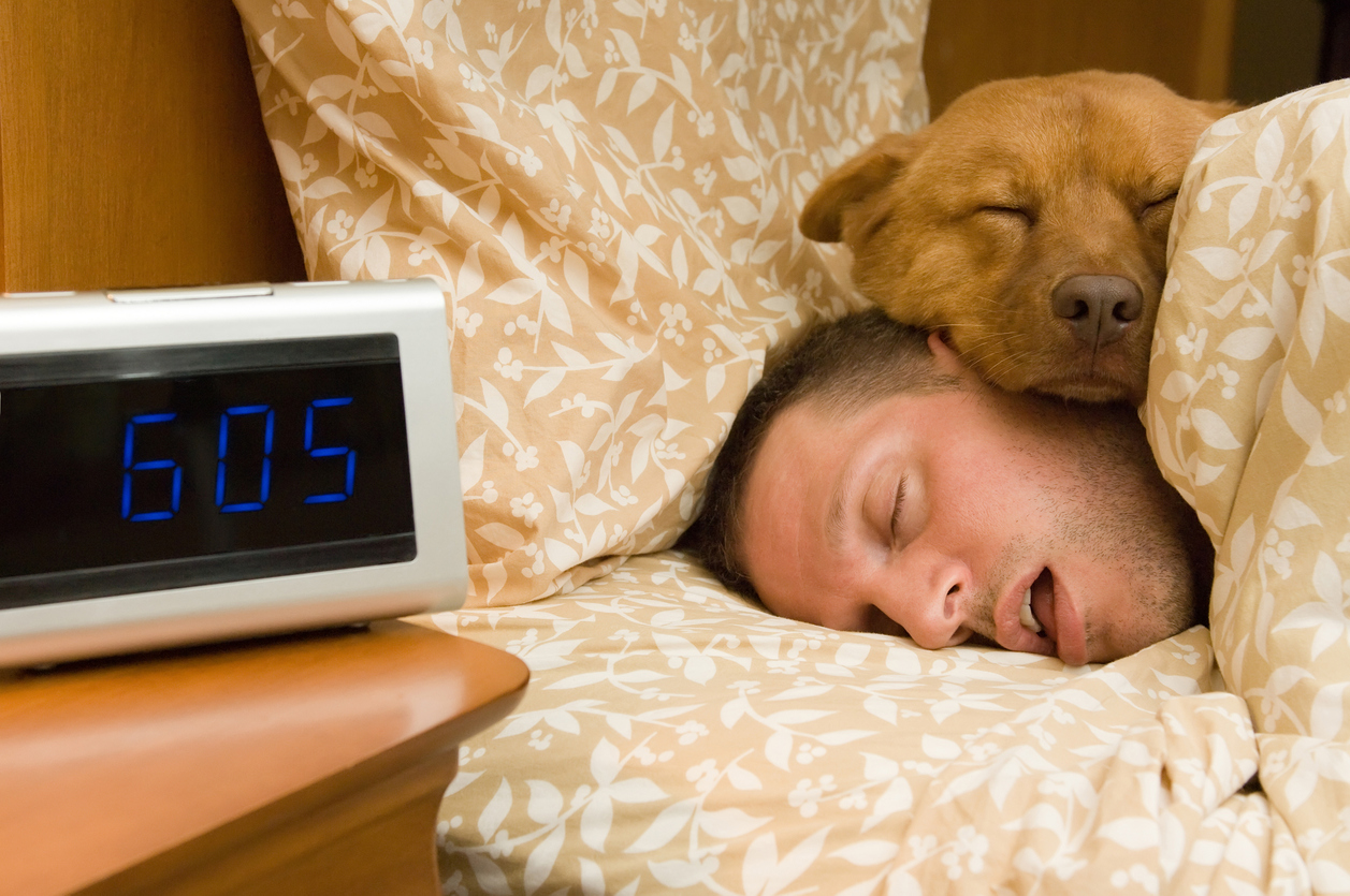 его усадьбу веселые картинки спящих людей круглогубцы применяются