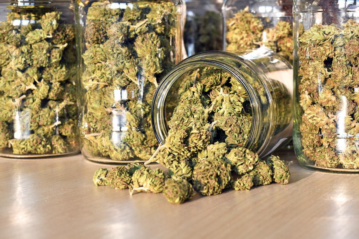 О продаже марихуаны как сделать косяк конопли