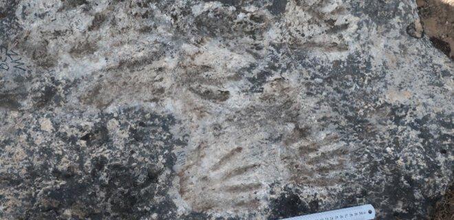 В Тибете нашли самый древний образец искусства. Ему около 200 000 лет, его авторы – дети - Фото